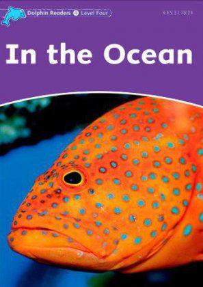 Dolphin Readers In the Ocean